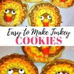 Fun Turkey cookies