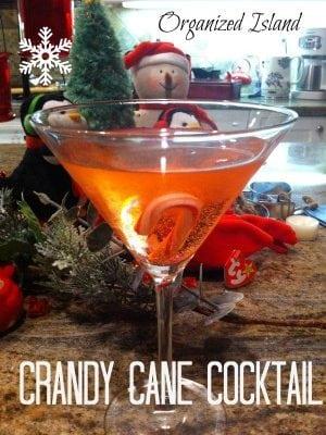 Festive Beverages for Christmas