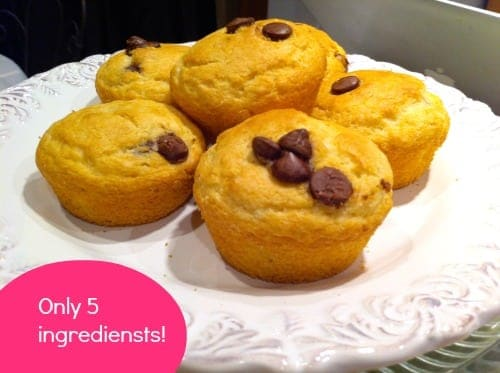 simple-chocolate-chip-muffins