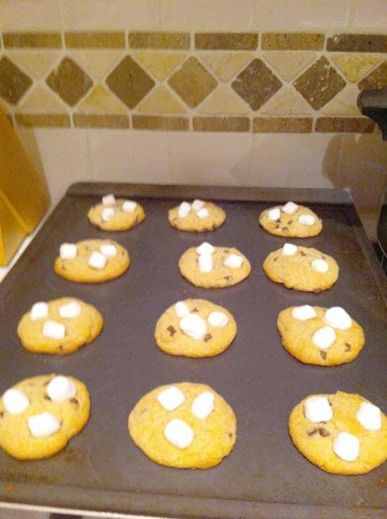 Choco Mallow Cookies