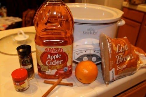 Hot-Apple-Cider-Ingredients