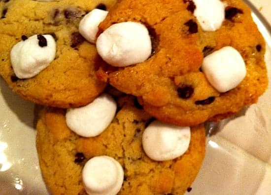 Tasty Chocolate Chip Mallow Cookies