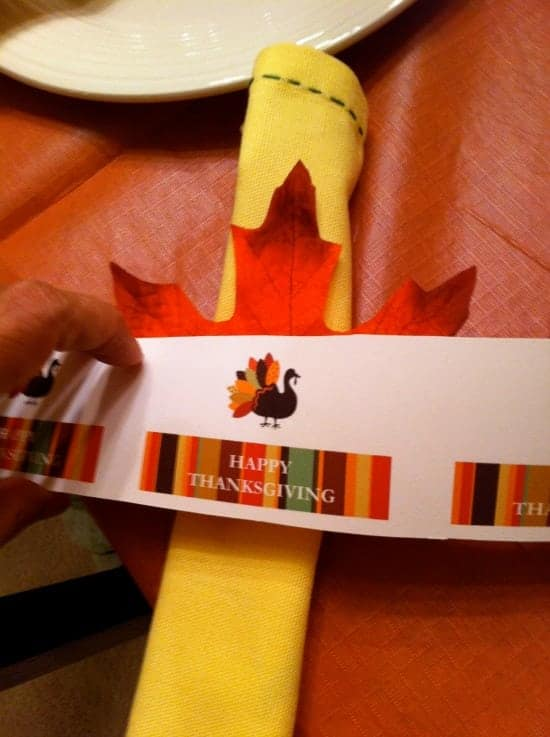cheap Thanksgiving napkin rings