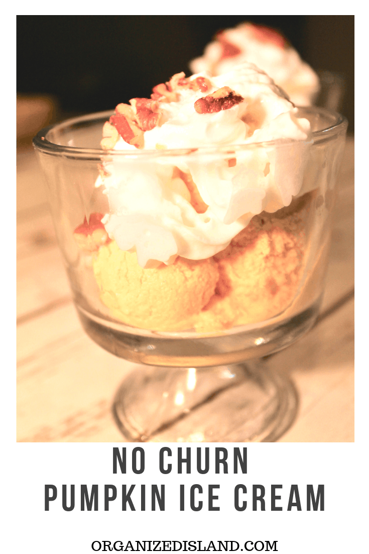 Easy No Churn Pumpkin Ice Cream Recipe