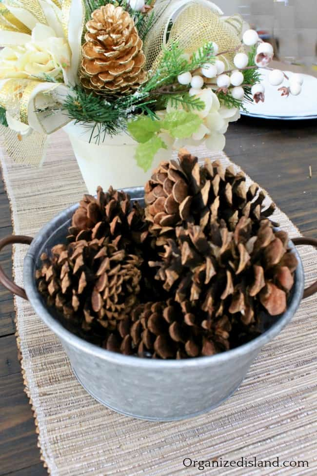 pinecones in bowl