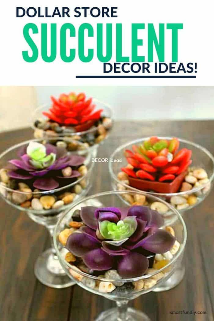 Succulent decor ideas