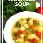 Easy Vegetable Soup Quick