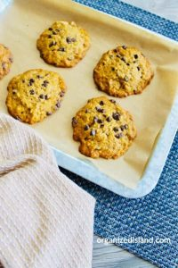 umpkin Chocolate Chip Cookies