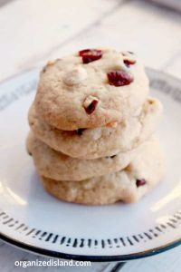 Cranberry Chocolate Chip Recipe