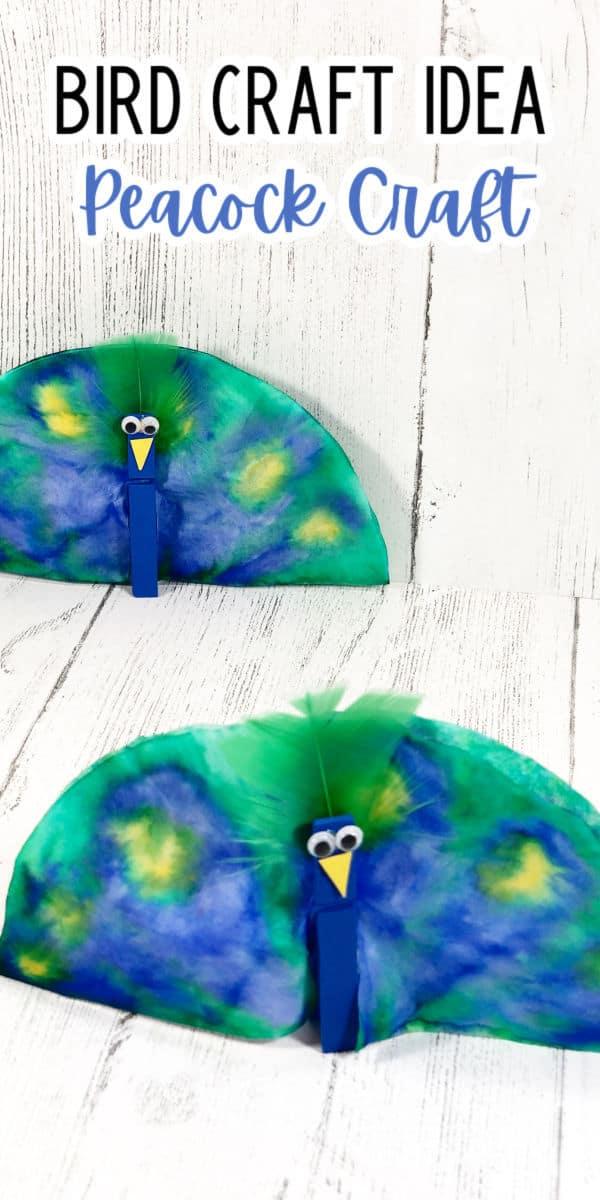 Bird Craft Ideas - peacock