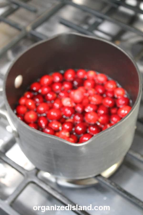 Making Cranberry Sauce From Scratch