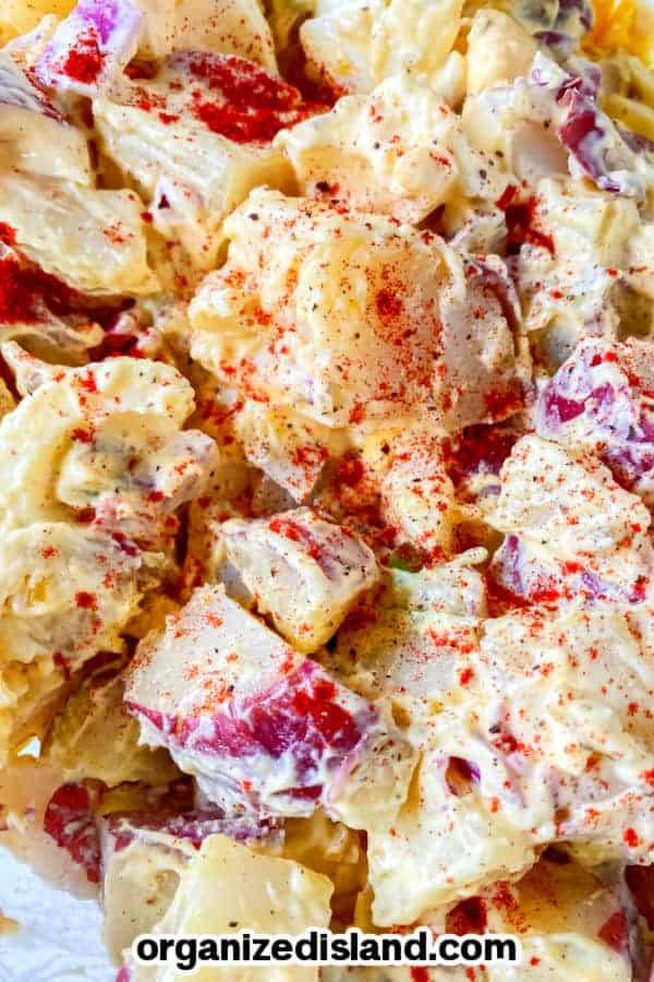 Potato Salad Recipe Easy