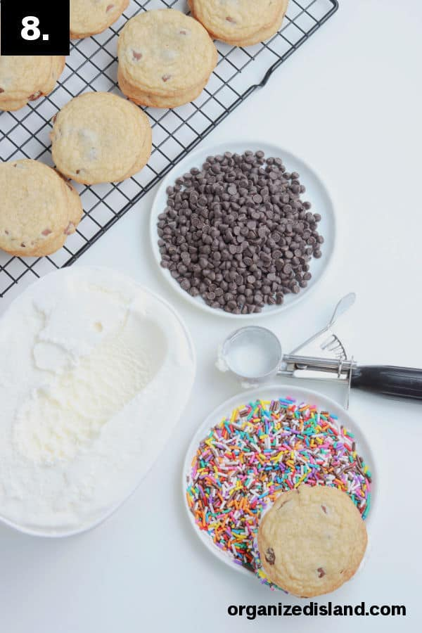 Cookie Ice Cream Sandwiches with chocolate chips