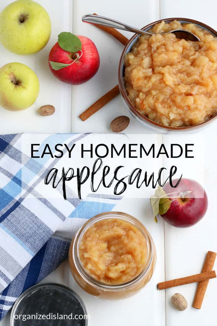 Homemade Applesauce in bowl with apples.