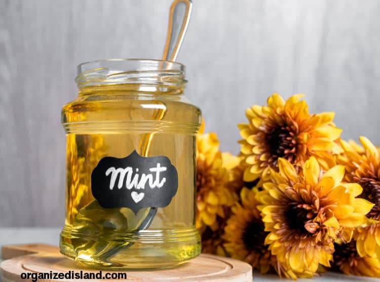 Easy Mint Simple Syrup