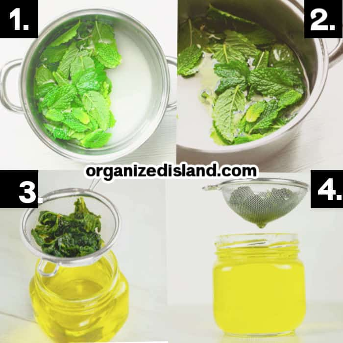 How To Make Mint Syrup