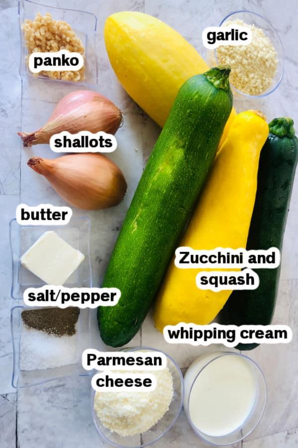 Zucchini and Squash Ingredients