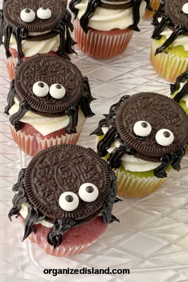Spider cupcakes Halloween Treat