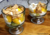 Kiiwi Mango Yogurt Parfaits