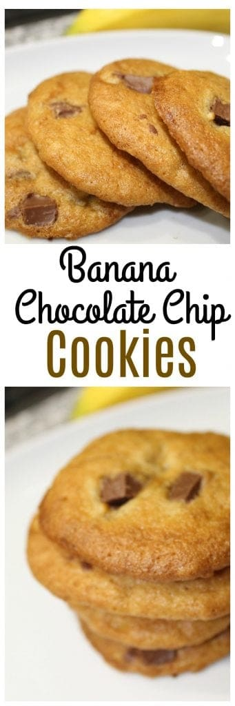Simple and tasty Banana Chocolate Chip cookies are a nice combination of flavors - think of a chocolate covered banana in cookie form!