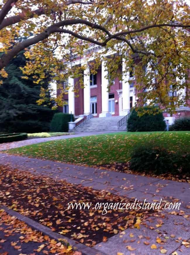Fall-leaves-Oregon-State