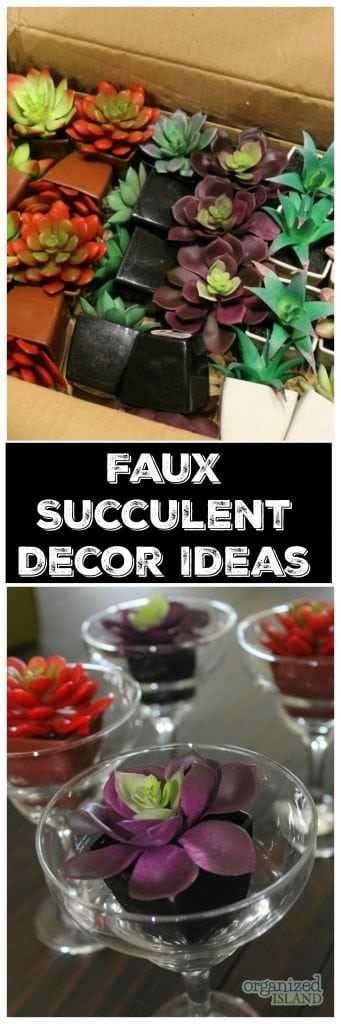 Cute, faux succulent decor ideas from the dollar store!