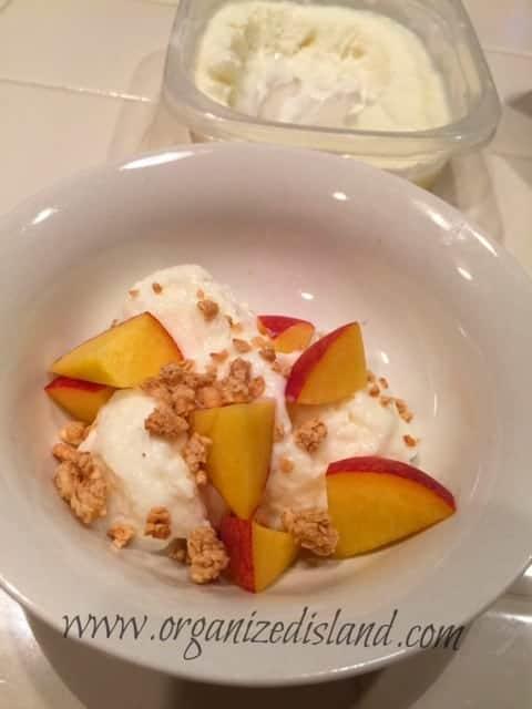 Frozen-yoghurt-with-fruit