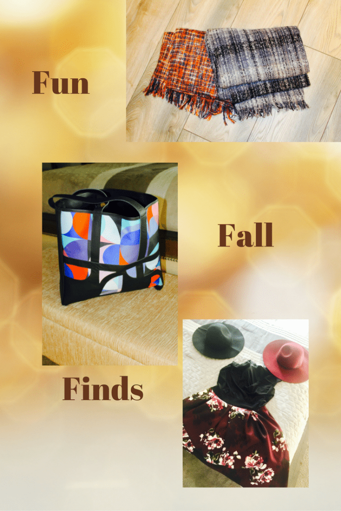 Fun fall finds that won't cost you a fortune!