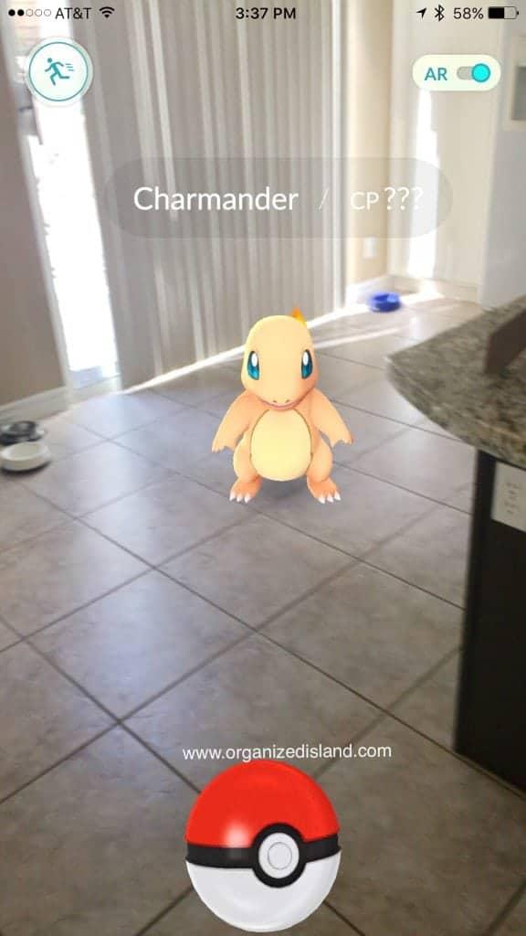 I found a Pokemon in my kitchen!