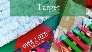 Need some last minute gift ideas? Check out these items from your nearest Target.