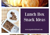 These Lunch Box Snack ideas will help you be ready to offer some creative alternatives to the usual lunch box ides.
