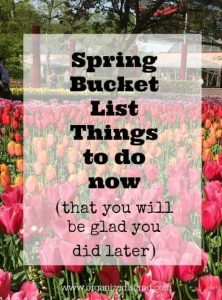A spring bucket list of things to do now that you will benefit from doing later. It's all about starting, like a seedling.