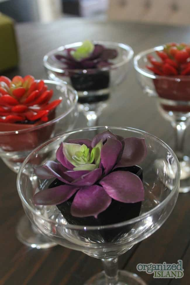 Cute idea for succulents in glassware.