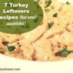 7 Turkey Leftovers Recipes besides sandwiches
