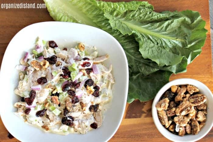 Chicken-salad-recipe-cranberries-in-bowl