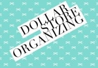 dollar-store-organizing-solutions