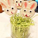 Easter Dessert – Bunny Pops