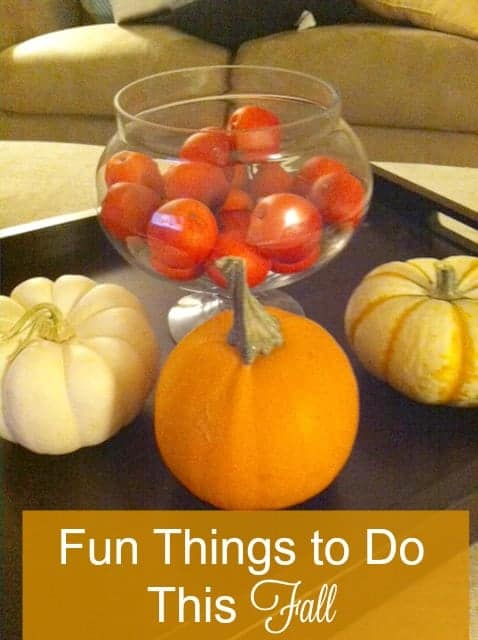 A List of fun things to do during fall! Make the most of the season!
