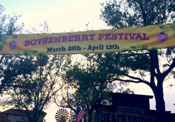 boysenberry-festival