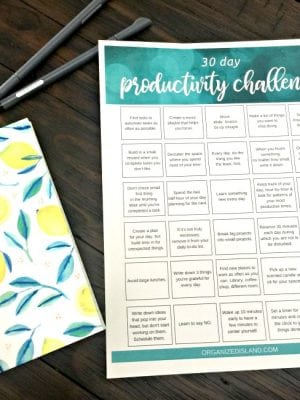 30 Day Productivity Challenge Printable