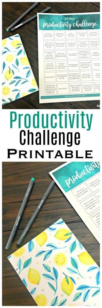 Productivity Challenge Printable