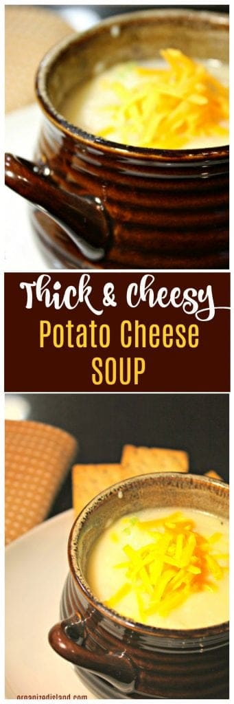 Thick and cheesy potato cheese soup in bowl